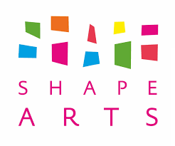 Review: The Shape Open 2013: Disability Re-assessed