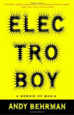 black and yellow book cover 'Electroboy'