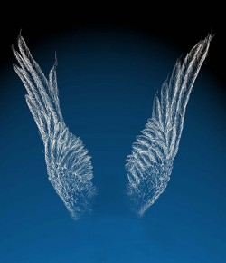 a pair of hand drawn wings, extended to the sky, white on dark blue.
