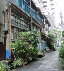 Looking into a small allyway at a very battered little building with broken panes in a groundfloor front of small wooden windows. There are blue balconies on the first/top floor of what looks like two dwellings. Outside the variety of green plants include