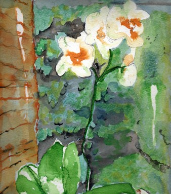 watercolour of flowers