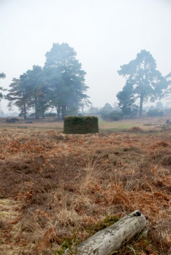 photo of a sculpture made from waste furze in a heathland